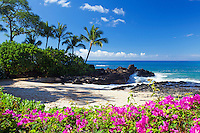 Bougainvillea, naupaka and palm trees at Secret Beach, Maui.