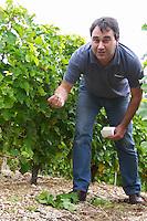 XXXX the winemaker. Domaine de la Perriere, Sancerre, Loire, France