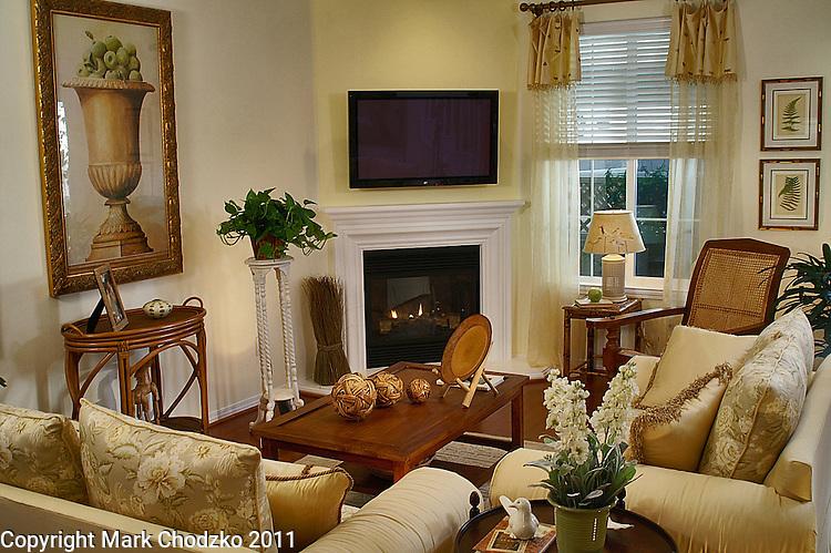 New home model living room for Anastasi Development.