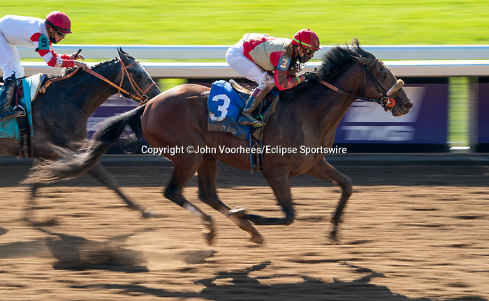 November 6, 2020: Rockertry, ridden by Irad Ortiz, Jr., wins the Thoroughbred Aftercare Alliance Stakes on Breeders' Cup Championship Friday at Keeneland on November 6, 2020: in Lexington, Kentucky. Scott Serio/Eclipse Sportswire/Breeders Cup/CSM