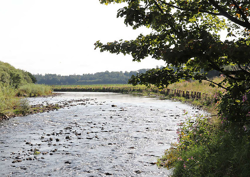 After the riverbank enhancement works on the Owenkillew River in Co Tyrone | Credit: Loughs Agency