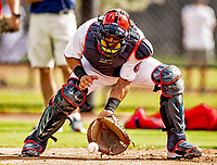 22 February 2019: Washington Nationals catcher Yan Gomes takes drills at home plate during a Spring Training workout at the Ballpark of the Palm Beaches in West Palm Beach, Florida. Mandatory Credit: Ed Wolfstein Photo *** RAW (NEF) Image File Available ***