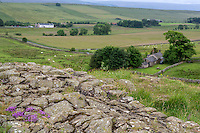 Northumberland,  England, UK.  Once Brewed from Hadrian's Wall (Pennine Way)  Footpath.