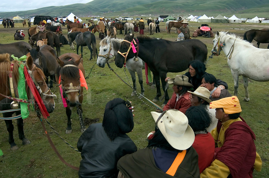 Khampa man look at horses in the livestock trading area at the Litang Horse Festival - Sichuan Province, China, (Eastern, Tibet)