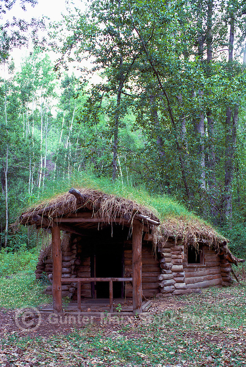 Glenora, near Telegraph Creek, Northern BC, British Columbia, Canada - Prospector's Old Log Cabin with Overgrown Sod and Grass Roof