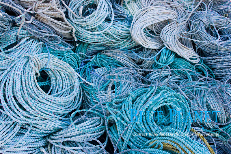Large mounds of colorful rope used on Crab Pots await use in the fishing port of Westport, Washington.. Pacific Ocean, USA, Pacific Ocean