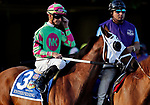 ARLINGTON HEIGHTS, IL - AUGUST 12: Enterprising #3, ridden by Corey Lanerie, during the post parade before  Arlington Million on Arlington Million Day at Arlington Park on August 12, 2017 in Arlington Heights, Illinois. (Photo by Jon Durr/Eclipse Sportswire/Getty Images)
