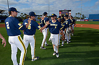 Michigan Wolverines Michael Brdar (9), Ako Thomas (4), Jake Bivens (18), and Dominic Jamett (41) high five teammates - including Jonathan Engelmann (2), Brett Adcock (35), and Jack Bredeson (34) - after the second game of a doubleheader against the Canisius College Golden Griffins on February 20, 2016 at Tradition Field in St. Lucie, Florida.  Michigan defeated Canisius 3-0.  (Mike Janes/Four Seam Images)