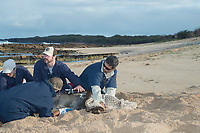 NOAA researcher Dr. Charles Littnan (center) waits for the glue to dry, while attaching a Crittercam and tracking instrumentation package to a Hawaiian monk seal, Neomonachus schauinslandi, Critically Endangered endemic species, west end of Molokai, Hawaii, photo taken under NOAA permit 10137-6, Ho ike a Maka Project