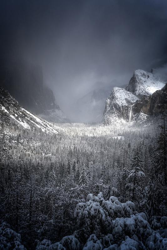 Winter storm sweeping through Yosemite Valley. Yosemite National Park, CA