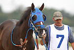 September 3, 2012. Smarty Jones Stakes contender Brimstone Island. Easter Gift, ridden by Kendrick Carmouche and trained by Nick Zito, wins the grade III Smarty Jones Stakes at Parx Racing. (Joan Fairman Kanes/Eclipse Sportswire)