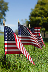 USA, Illinois, Metamora, Row of American flags on cemetery