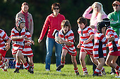 100605 Karaka Junior Rugby action photos