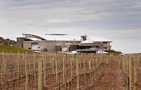 View over the vineyard and winery with restaurant Bodega Familia Schroeder Winery, also called Saurus, Neuquen, Patagonia, Argentina, South America