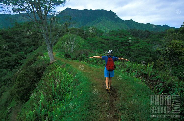 Hiking the Kuilau Ridge Trail.  Wailua, Kauai