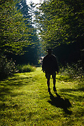 Silhouette of a man walking down path at Bretzfelder Memorial Park in Bethlehem, New Hampshire.