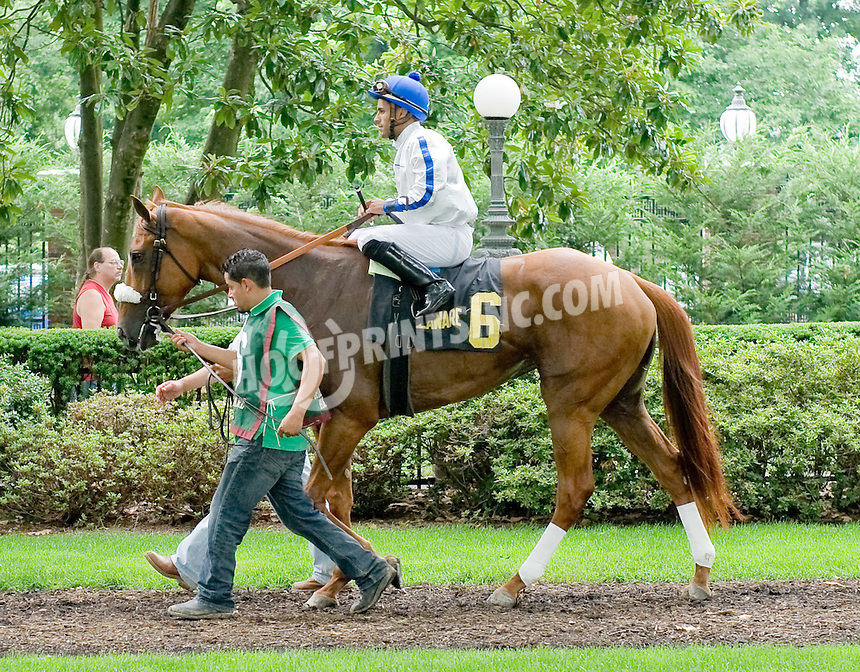 Millennia before The Rooney Memorial Stakes at Delaware Park on 6/18/11