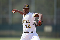 Pittsburgh Pirates pitcher Wilmer Contreras (29) delivers a pitch during an Instructional League intrasquad black and gold game on October 11, 2017 at Pirate City in Bradenton, Florida.  (Mike Janes/Four Seam Images)