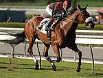 October 17, 2009.Jockey Tyler Baze  winning the Sen. Ken Maddy Handicap riding Gotta Have Her, Oak Tree at Santa Anita Park,  Arcadia, CA