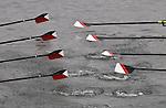 Oar blades, oars, Rowing, race, Opening Day Regatta, Seattle, Washington,