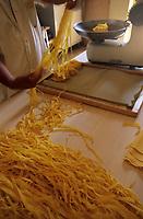 Europe/Italie/Emilie-Romagne/Bologne : Préparation des pates tagliatelles chez Alessandro et Alessandra Spisni champions professionnels de la préparation des pates