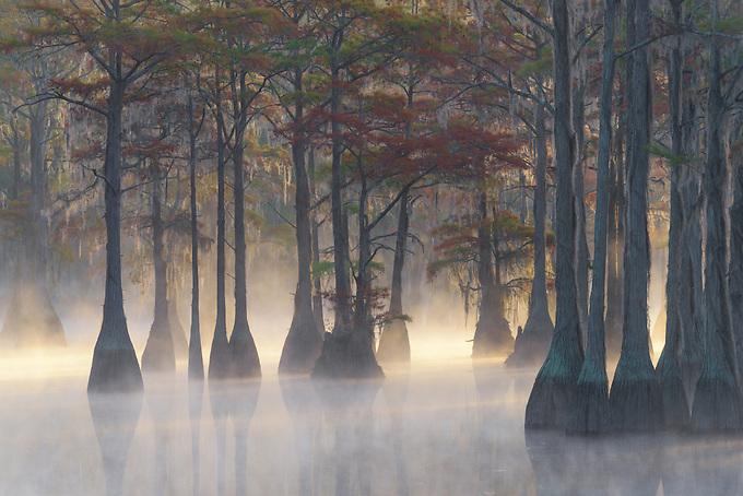 The rising sun illuminates the misty swamp on a cold autumn morning.