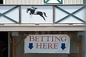 Fair Hill, the only one-day meet on the NSA calendar where fans can participate in parimutuel wagering.