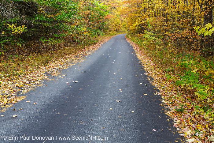 Autumn foliage along Tunnel Brook Road in Easton, New Hampshire during the autumn months.