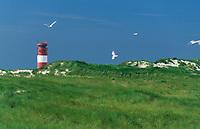 Helgoland, Nordsee, Leuchtturm auf der vorgelagerten Düne
