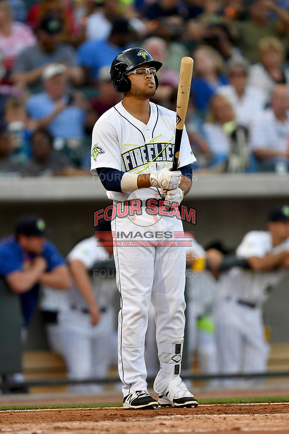 Center fielder Desmond Lindsay (2) of the Columbia Fireflies bats in a game against the Lexington Legends on Saturday, April 22, 2017, at Spirit Communications Park in Columbia, South Carolina. Lexington won, 4-0. (Tom Priddy/Four Seam Images)