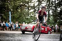 Geraint Thomas (GBR/Ineos) up the Col de Porte (final climb to the finish)<br /> <br /> Stage 2: Vienne to Col de Porte (135km)<br /> 72st Critérium du Dauphiné 2020 (2.UWT)<br /> <br /> ©kramon