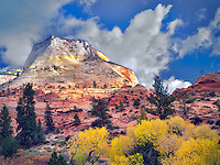 Fall color and clouds.in Zion Plateau Zion National Park, Utah