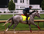 LOUISVILLE, KY - APRIL 23: Lani (Tapit x Heavenly Romance, by Sunday Silence) gallops on the track in preparation for the Kentucky Derby at Churchill Downs, Louisville KY. Owner Ms. Yoko Maeda, trainer Mikio Matsunaga. (Photo by Mary M. Meek/Eclipse Sportswire/Getty Images)