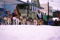 An Iditarod sled team at the finish. Nome, Alaska.