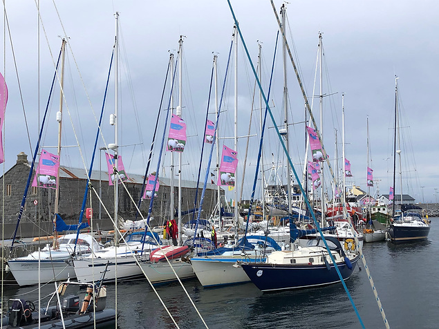The pontoon-berthed section of the fleet in Kilronan. Photo: Declan Dooley