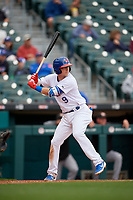 Buffalo Bisons Andy Burns (9) bats during an International League game against the Norfolk Tides on June 21, 2019 at Sahlen Field in Buffalo, New York.  Buffalo defeated Norfolk 2-1, the first game of a doubleheader.  (Mike Janes/Four Seam Images)