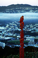Wellington city from Mount Victoria at 6.30am, Thursday during Level 3 lockdown for the COVID-19 pandemic in Wellington, New Zealand on Friday, 3 September 2021.