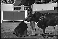 11 Mai 1969. Vue de la corrida de Marquez dans les arènes de Toulouse.