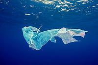 plastic, marine debris, Azores, Portugal, Atlantic Ocean
