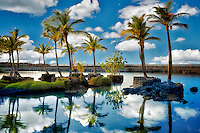 Palm trees reflecting in water of Lahuipua'a and Kaaiopio Ponds. Hawaii Island