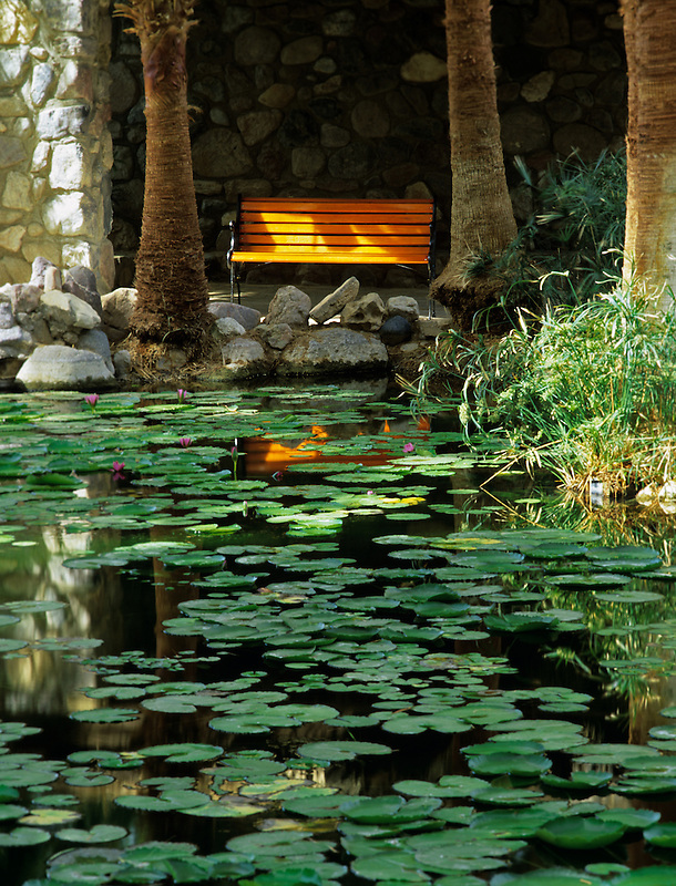 Lily pond and bench in gardens of Furnace Creek Inn. Death Valley National Par, California
