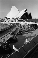 Australia. New South Wales. The Sydney Opera House is situated on Bennelong Point in Sydney Harbour. The opera with its spherical-sectioned shells was built by the architect Jorn Utzon. The roofs of the House are constructed of 1,056,000 glazed white granite tiles. Two birds. and a restaurant terrace. 7.3.99 © 1999 Didier Ruef