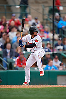 Rochester Red Wings Drew Maggi (5) bats during an International League game against the Charlotte Knights on June 16, 2019 at Frontier Field in Rochester, New York.  Rochester defeated Charlotte 3-2 in the second game of a doubleheader.  (Mike Janes/Four Seam Images)