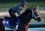 October 28, 2019 : Breeders' Cup Juvenile Turf entrant Our Country, trained by George Weaver, exercises in preparation for the Breeders' Cup World Championships at Santa Anita Park in Arcadia, California on October 28, 2019. Carolyn Simancik/Eclipse Sportswire/Breeders' Cup/CSM