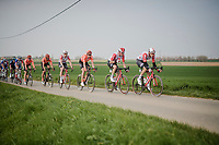 Team Lotto-Soudal trying to bridge the gap with the front group<br /> <br /> 81st Gent-Wevelgem 'in Flanders Fields' 2019<br /> One day race (1.UWT) from Deinze to Wevelgem (BEL/251km)<br /> <br /> ©kramon