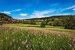 Deutschland, Bayern, Niederbayern, Naturpark Bayerischer Wald, St. Englmar: Luftkurort am Predigtstuhl-Suedhang | Germany, Bavaria, Lower-Bavaria, Nature Park Bavarian Forest, St. Englmar: popular resort