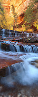 A cascade over sandstone in the wilderness of Zion National Park.
