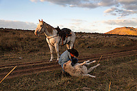 Edgar Oscanoa rides Dot trailing sheep in Upper Gully with the help of border collies and Pyranees guard dogs.  He stops to upright a sheep that was stuck in the road rut on its back.  Dot calmly waits.<br /> <br /> Sharon O'Toole drove her granddaughter Siobhan Lolly and father George Salisbury around the Ladder Livestock Ranch in southern Wyoming (west of Bags at the Colorado border.) Peruvian shepherds traditionally work at the ranch watching over sheep.  Dot, an adopted mustang that came from the correctional center in Riverside, saved a shepherd's life by finding his way home on a cold night when they were lost.  Nelson, the saved worker, left years ago but the horse is still a favorite among ranch hands like Edgar.