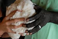 MALI , conference about fair trade cotton, black and white hand holding symbolic  together fair trade cotton / Konferenz mit Textilunternehmen und afrikanischen Bauern zum Thema oekologischer Anbau und Fairtrade Baumwolle, afrikanische und europaeische Hand mit Baumwolle