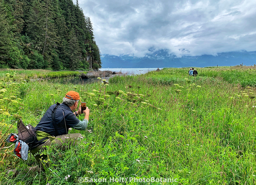 David Wimpfheimer naturalist guide taking cell phone photo on Hike to Caine's Head Resurrection Bay on Kenai Peninsula, Pacific Horticulture tour of Alaska